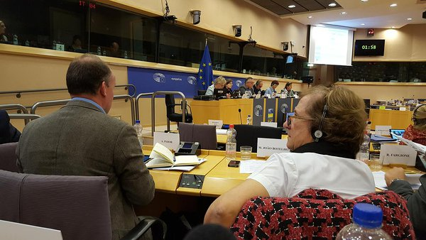 ELARD speaks at joint hearing on LEADER experiences in the European Parliament